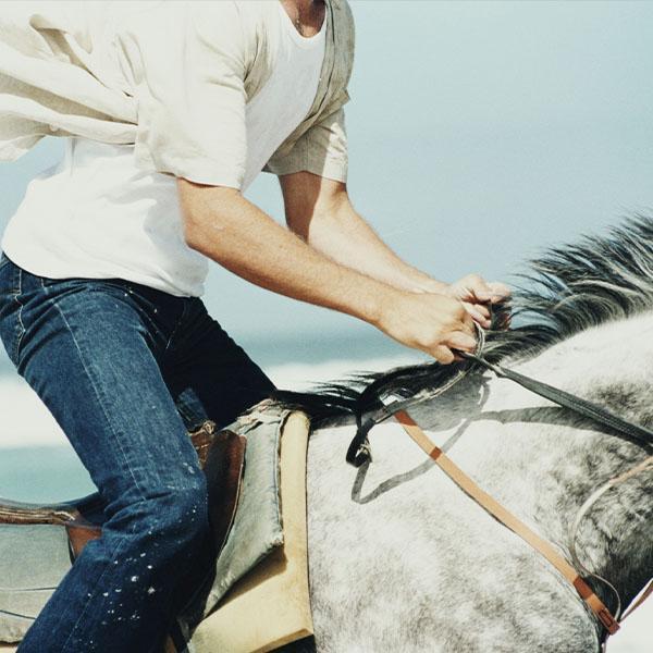 Jeździec nabiałym koniu